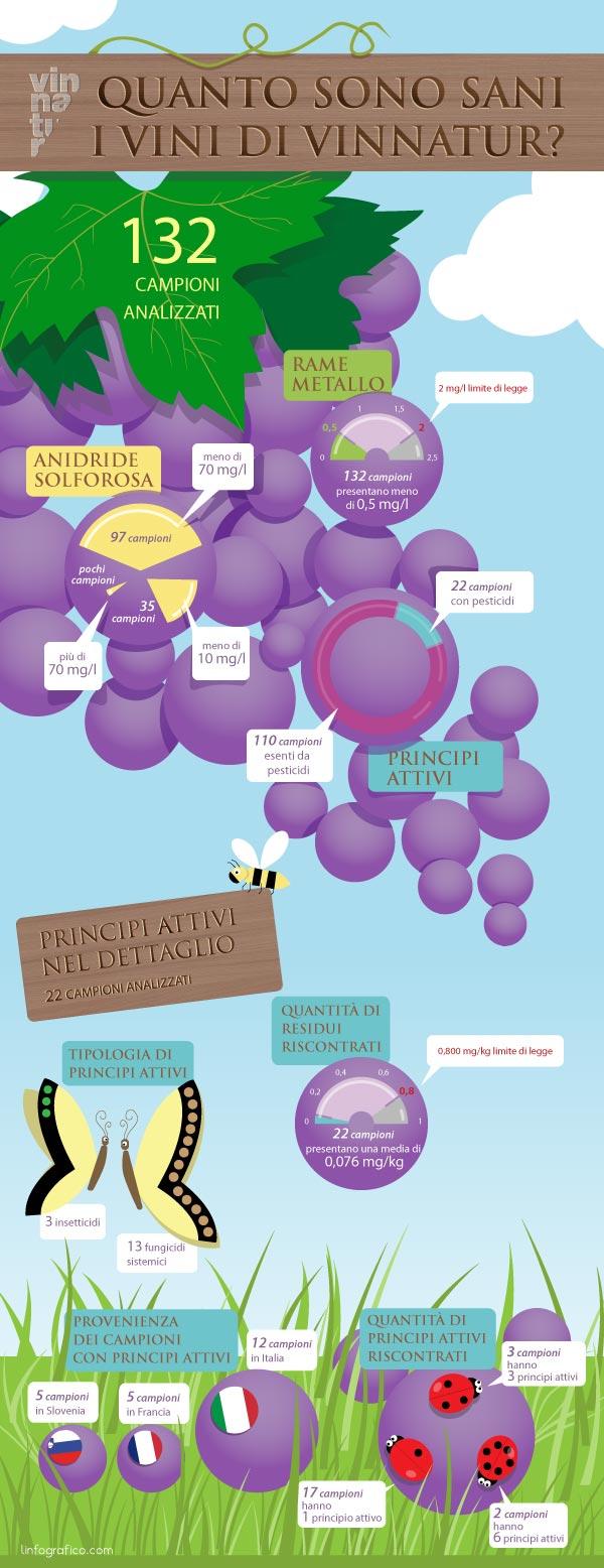 Infografica sulle analisi chimiche Vinnatur 03